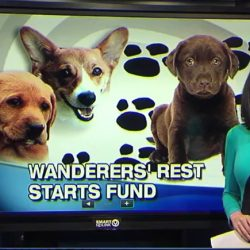 News Channel 9 supports Archie's Fund