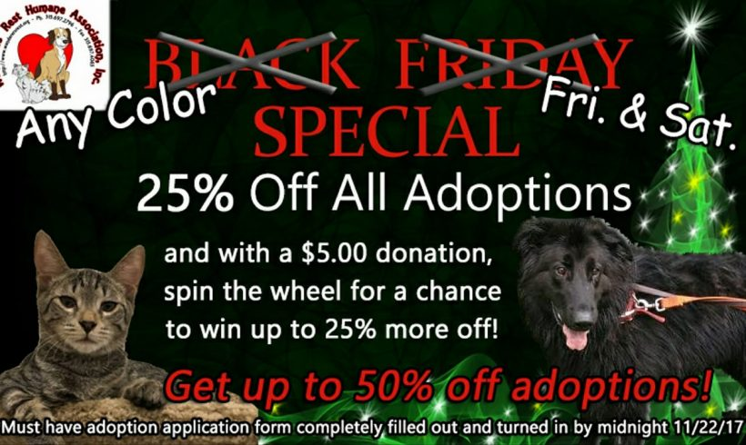 Black Friday (and Saturday!) Special
